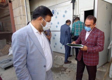 کشف ۹ تن آلایش دامی غیرمجاز در کهریزک/ ۳ سردخانه پلمب شد