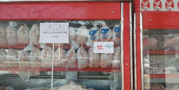 توزیع ۵ تن مرغ با قیمت مصوب در ۱۱ نقطه از شهرستان ری