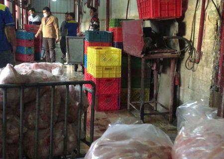 کشف ۲ هزار و ۴۰۰ کیلو مرغ احتکاری در باقرشهر
