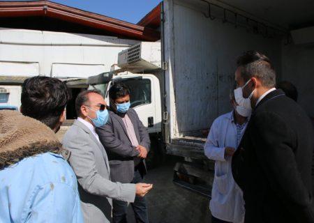 بازدید بخشدار و رییس دادگاه بخش کهریزک از کشتارگاه های این بخش / ۴ لاشه گوساله توقیف شد