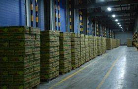 راهبرد اصلی جهاد کشاورزی در شهرستان ری توسعه صنایع تکمیلی و تبدیلی است